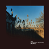 To Build a Home (feat. Patrick Watson) - The Cinematic Orchestra