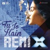 Tu Jo Hain Remix by DJ Angel From Mr X Single