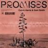 Promises Single