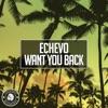 Want You Back Single
