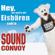 Hey, wir woll'n die Eisbären seh'n - Sound Convoy