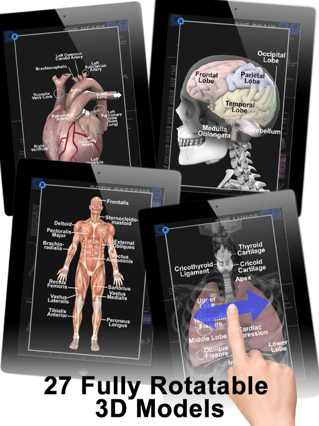 Anatomy 3d app
