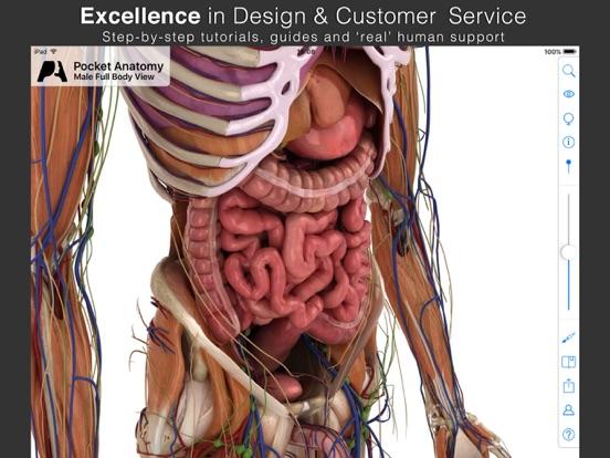Pocket Anatomy Screenshots