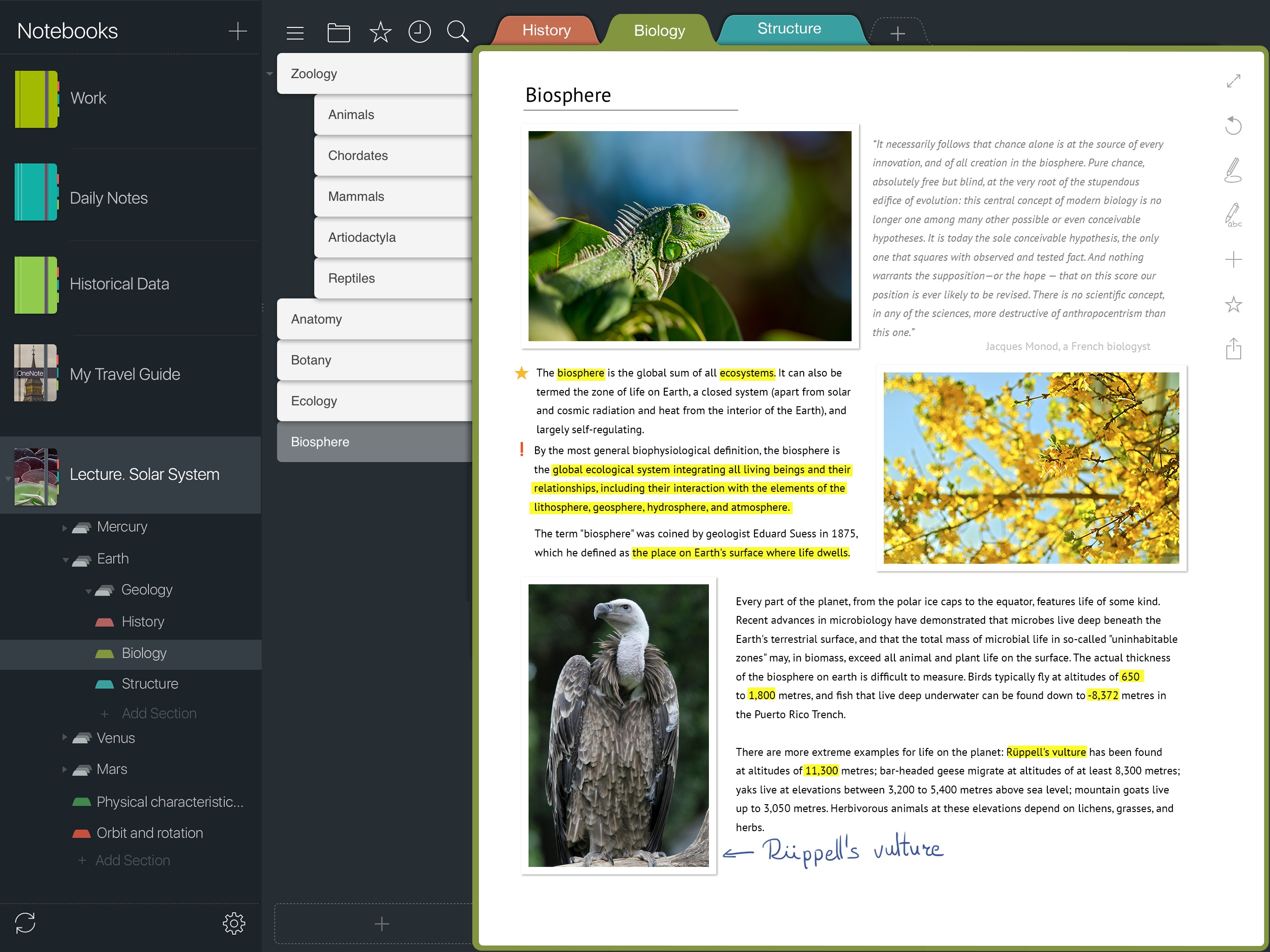 Meet Outline 3.7, Bringing Support for iPad Pro and Apple Pencil Image