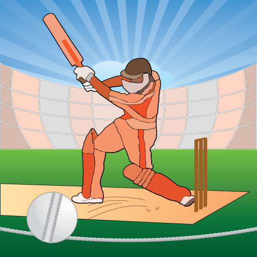Cricket Facts 2011 Pro