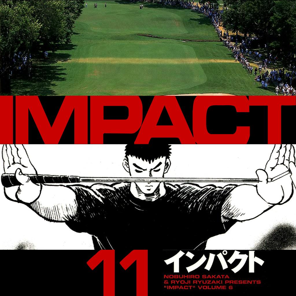 IMPACT (11)
