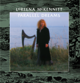 Parallel Dreams