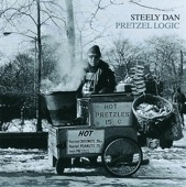 Steely Dan - Night by Night