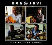 It's My Life (2003 Version)