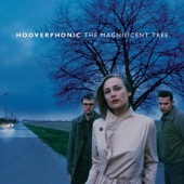 Hooverphonic - Frosted Flake Wood