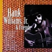 Hank Williams, Jr. - Montana Song