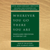 Jon Kabat-Zinn - Wherever You Go There You Are artwork