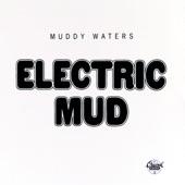 Muddy Waters - Tom Cat
