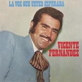Vicente Fernández - Quien Te Pregunto