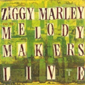 Ziggy Marley And The Melody Makers - I Know You Don't Care About Me (Live)