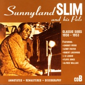 Sunnyland Slim - The Fat Man: You've Got To Stop This Mess