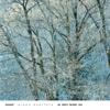 Mozart: Piano Quartets - Emanuel Ax, Isaac Stern, Jaime Laredo & Yo-Yo Ma