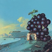 Moby Grape - Murder In My Heart For The Judge