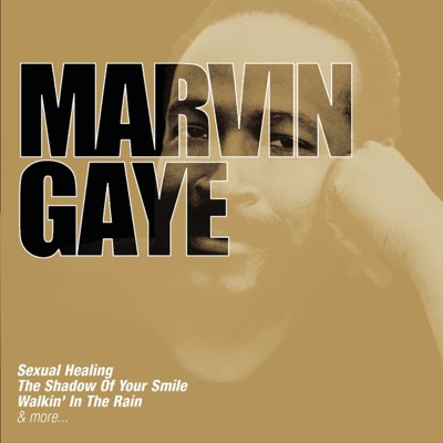 Collections - Marvin Gaye