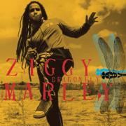 Dragonfly - Ziggy Marley - Ziggy Marley