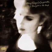 Mary Chapin Carpenter - What You Didn't Say (Album Version)