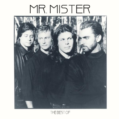 The Best of Mr. Mister - Mr. Mister