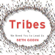 Seth Godin - Tribes: We Need You to Lead Us (Unabridged)