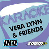 Zoom Platinum Artists - Volume 89 (Karaoke Verison)