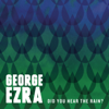 Did You Hear the Rain? - EP - George Ezra