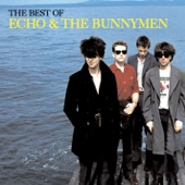 The Bunnymen - Bring On The Dancing Horses