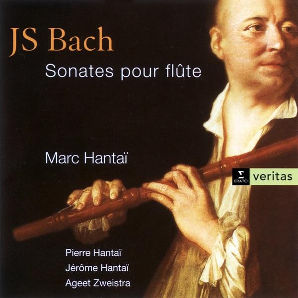 j s bach flute sonata in b Download johann sebastian bach sonata for flute and basso continuo no2 in e minor, bwv 1034 free sheet music free music score of sonata for flute and basso continuo no2 in e minor, bwv 1034.