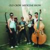 Wagon Wheel - Old Crow Medicine Show