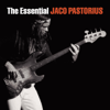 Jaco Pastorius - The Essential Jaco Pastorius  artwork