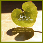 Living Meditation - Guided Meditations With David Harshada Wagner