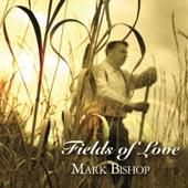 Mark Bishop - Falling Star