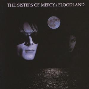 Floodland (Deluxe Version)