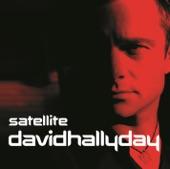 David Hallyday - Nous