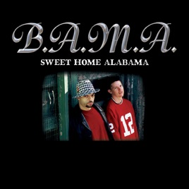 Sweet home alabama single by b a m a on apple music for Who sang the song sweet home alabama