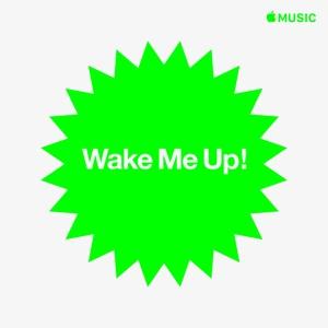 Wake Me Up