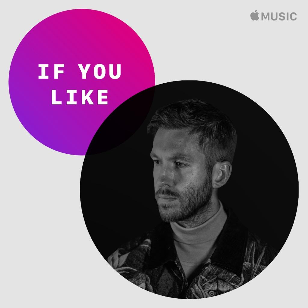 If You Like... Calvin Harris
