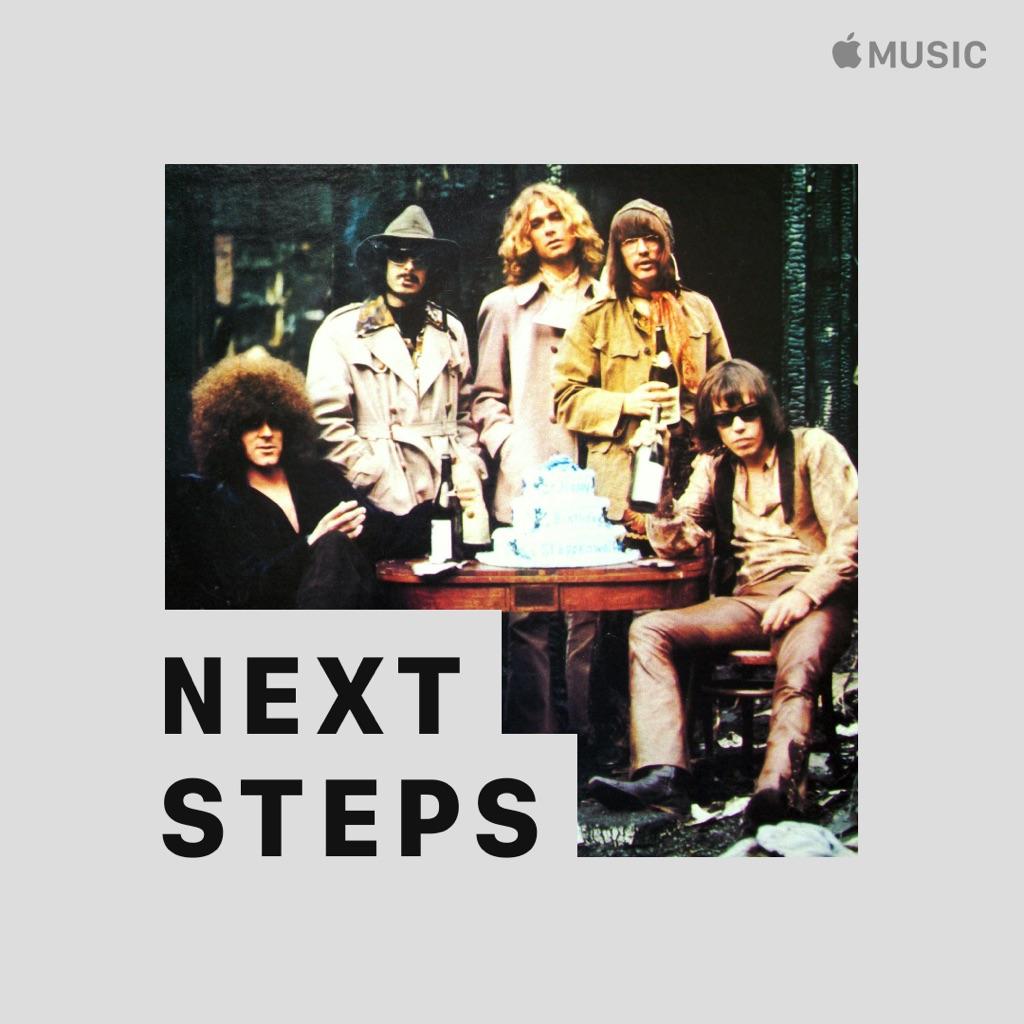 Steppenwolf: Next Steps