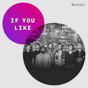 If You Like... Maroon 5