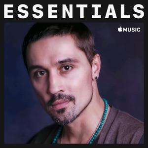 Dima Bilan Essentials