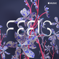 FEELS music review