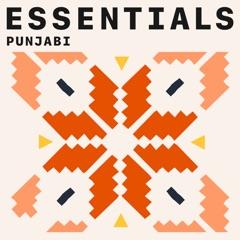 Punjabi Essentials