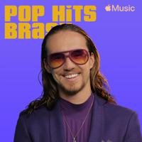 Pop hits Brasil Mp3 Songs Download