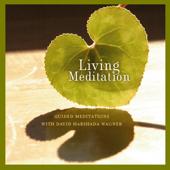 Living Meditation - Guided Meditations With David Harshada Wagner