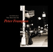 Do you feel like we do / Peter Frampton