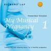 My Musical Pregnancy 1 - Raimond Lap