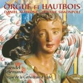 Daniel Matrone - Sonate en Si bémol majeur: I. Andante